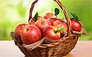 Яблоки – один из самых полезных фруктов и путь к долголетию