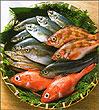 Как не ошибиться при выборе рыбы