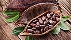 Чем так полезно какао?