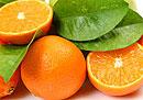 Цитрусовые не рекомендуют людям с лишним весом