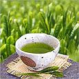 Зелёный чай защищает женщин от некоторых видов рака