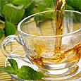 Десять полезных трав для чая
