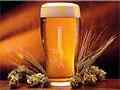 Закон о настоящем пиве готовится к принятию в Госдуме