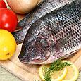 Рыбные блюда снижают риск образования колоректальных полипов у женщин