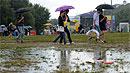 Причиной острого расстройства пищеварения может стать дождливая погода со слякотью