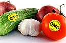 Производители в США скрывают наличие в продуктах ГМО