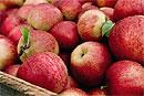 В яблоках обнаружили эликсир молодости