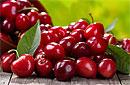 С помощью вишни можно снизить риск возникновения приступов подагры на 75%