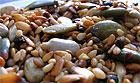 Лучшие продукты для здоровья мозга – это семена и орехи!