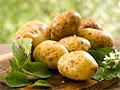 Употребление картофеля не ведет к ожирению