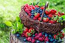 Польза и эффективность ягод для похудения