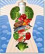 6 основных шагов к здоровому питанию