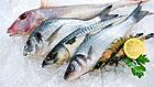 4 основных правила как выбрать свежую рыбу