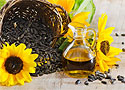 Подсолнечное масло полезней чем оливковое