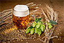 Пиво может помочь в борьбе с раком и другими болезнями