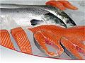 Ученый из Керчи объявил семгу и лосось опасными для жизни