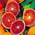 Учёные определили ген, который заставляет апельсины наливаться красными пигментами