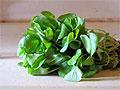 Специалисты рекомендуют мужчинам есть кресс-салат