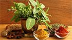 Замена соли травами и специями поможет уменьшить количество потребляемого натрия
