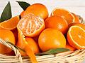 Цитрусовые фрукты признали эффективным средством от ожирения
