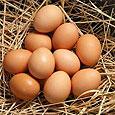 Сколько можно съедать яиц в неделю?