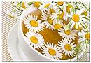 Чай из ромашки может бороться с раковыми клетками