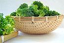 Регулярное употребление брокколи снижает риск возникновения и развития остеоартроза